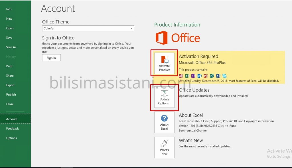 Office aktivasyon ve update