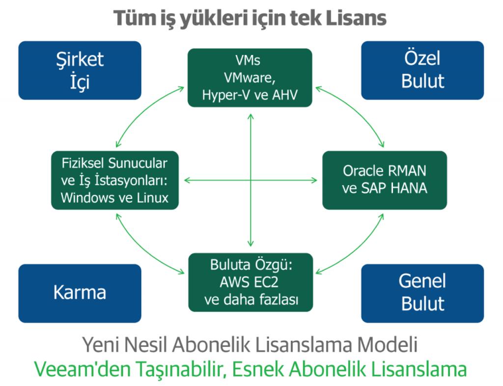 VIL lisanslama modeli